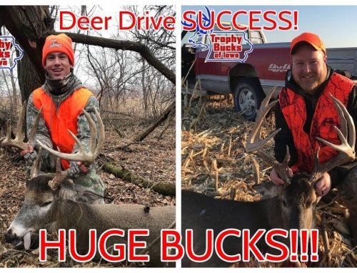 Iowa DEER DRIVES 2020!!! – HUGE BUCKS DOWN!
